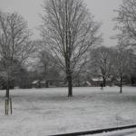 Finalmente nevó