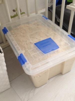 caja arena casera