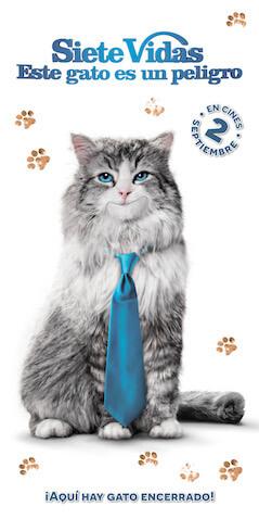 """toallas de la película""""Siete vidas, este gato es un peligro"""""""