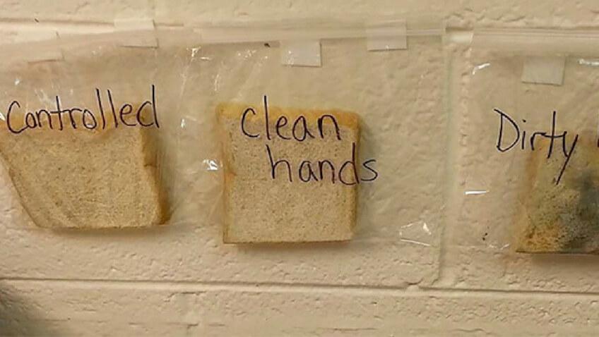 Experimento para conseguir crear el hábito de lavar las manos en niños
