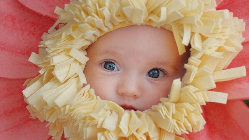 Disfraz de flor para bebé casero con plantilla y tutorial