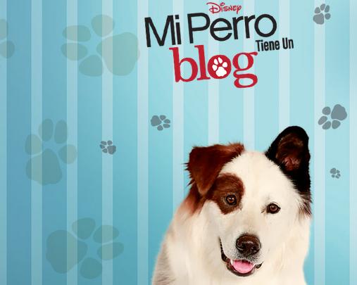 mi perro tiene un blog disney channel