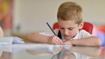 Dificultades específicas de aprendizaje y trastornos del neurodesarrollo