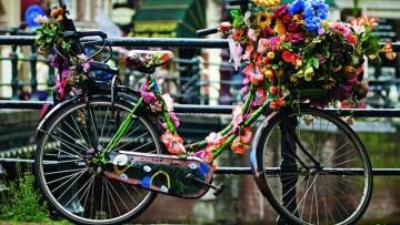 7 curiosidades de tener y vivir con hijos en Holanda