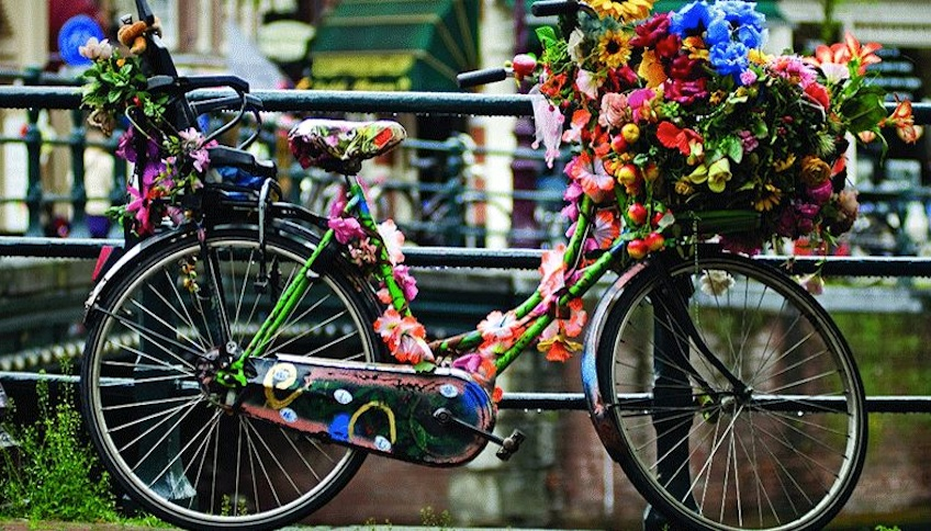 bicicleta flores amsterdam