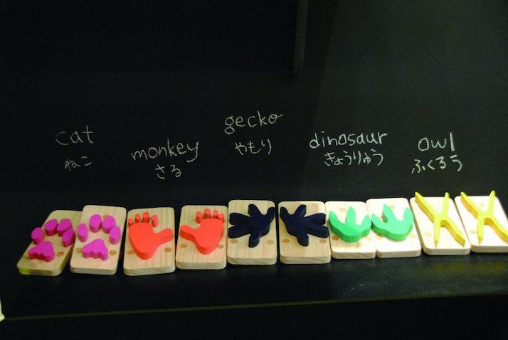 chanclas para niños Diferentes modelos de huellas animales